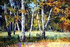 Картина Осенние березы